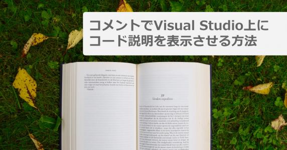 コメントでVisual Studio上にコード説明を表示させる方法